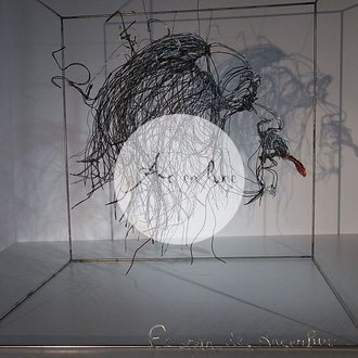 Einstein de Arc en Lune dans cube fil de fer 3D 50x50cm