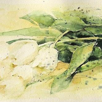 Blumen mit Aqurell malen © Cecily Park, Alle Rechte vorbehalten
