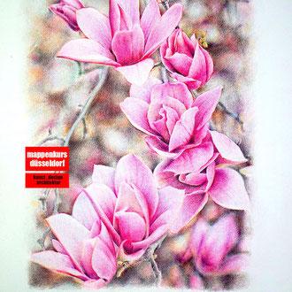 Blumenzeichnen, Zeichenkurs Blumen, Blumen zeichnen lernen, Mappenkurs Düsseldorf