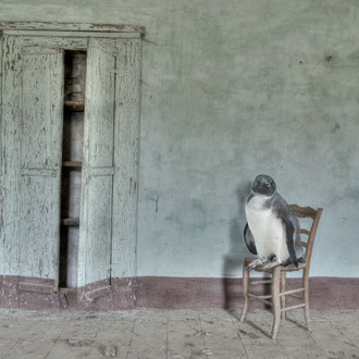 Stanza n. 7 (resto in attesa) - Room n. 7 (I continue waiting) - Stampa Giclée su carta cotone Hahnemuhle, cm 50x75,  Ed. n° 7 + II p.a.