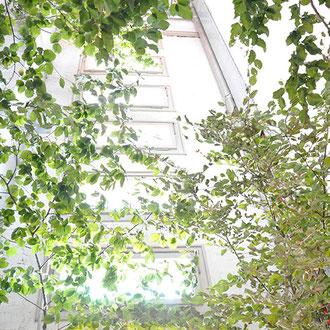 Installation Unter Bäumen Träumen – Off Space Schlauchturm, ATELIERTURM – 2017