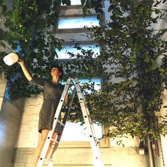 Pflege der Installation Unter Bäumen Träumen – Off Space Schlauchturm, ATELIERTURM – 2017