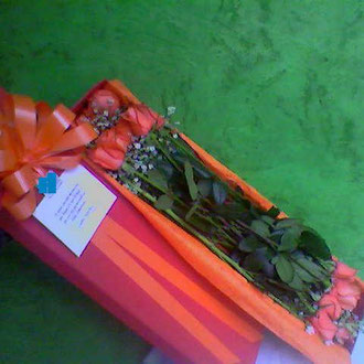REF.17  CAJA DECORADA ROSAS SALMON,MOÑO Y PAPEL SEDA.