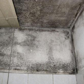 Condensation dans nouvel appartement jean glaude ing arch for Condensation dans une maison