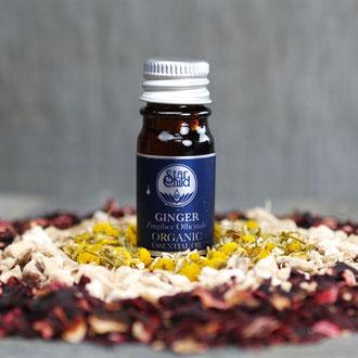 Ingwer organic (Zingiber officinale) 5ml CHF 20.-- (gegenwärtig ausverkauft)