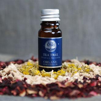 Teebaum organic (Melaleuca alternifolia) 10ml CHF 17.--