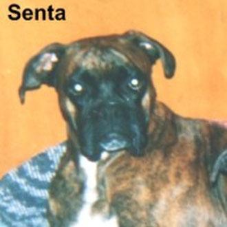 Senta (Eicka v. der Osterperle)