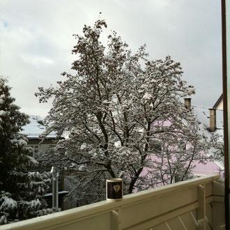 ...im Winter...