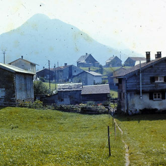 Fussweg Gerbergut-Loch
