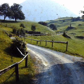 Strasse nach Mitlödi (Einbahn)