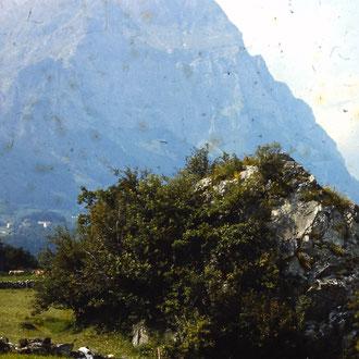 Bühlstein