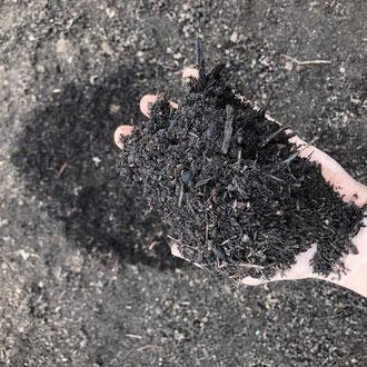 Kompost als wesentlicher Beitrag zum Humusaufbau