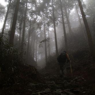 熊野古道 和歌山