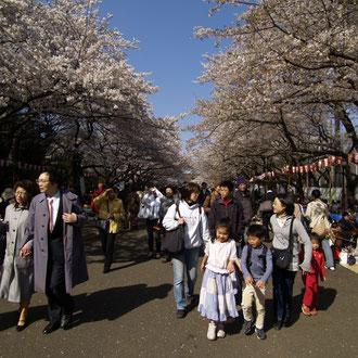 上野公園 東京