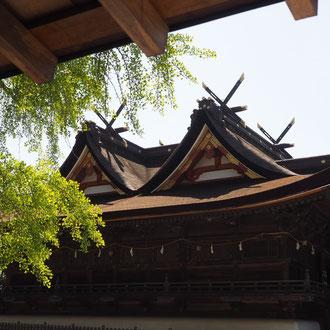 夏の盛り 吉備津神社
