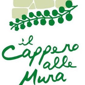 www.ilcapperoallemura.com/