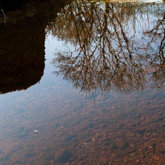 Irlande, Comté du Connemara, Athenry, reflet au gué de la Clareen