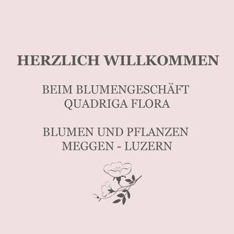 Blumengeschäft Quadriga Flora in Meggen Luzern. Blumenstrauss und Blumengesteck in moderner Floristik