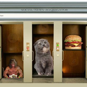 """""""Reddit"""" für das Kompakt-Magazin der IG BCE © Stefan Hoch"""