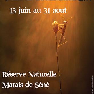 <h3>AFFICHE DU CONCOURS INTERNATIONAL DE LA RESERVE DES MARAIS DE SENE<h3><p>La mante curieuse</p>