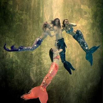 Meereswesen Komposition