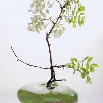 瀬沼健太郎のガラスと花 伊勢丹相模原店(神奈川/2014)