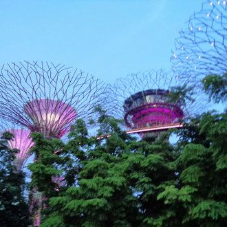 Giant Trees, Gardens by the bay, Singapore