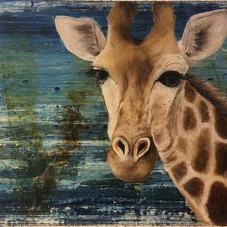 Giraffenkuh