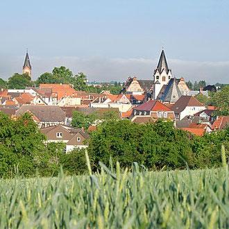 Wohnprojekt Holzapfel Groß-Umstadt Stadtansicht