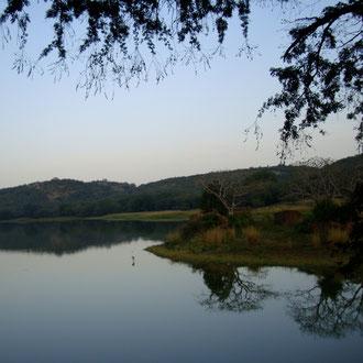 Morgenstimmung Ranthambore National Park Rajasthan