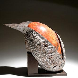 """""""Cocon frêne"""" loupe de frêne - h 34 cm - 2007"""
