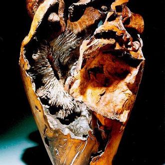 """""""Homo sapiens dehiscens"""" chêne vert - h 80 cm - face- 2000 - 2003"""