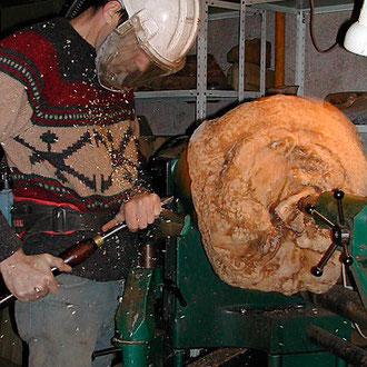 Début d'ébauche d'une racine de bruyère
