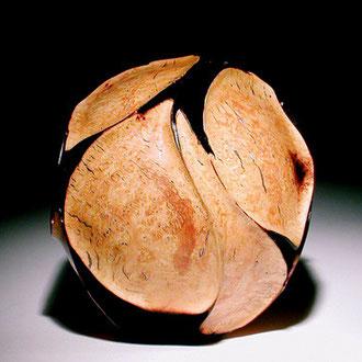 """""""Carambole polie"""" ronce de bruyère - h 20cm - 2002"""