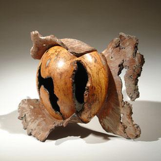 """""""grande Carambole"""" loupe de hêtre - h 30 cm - 2009"""
