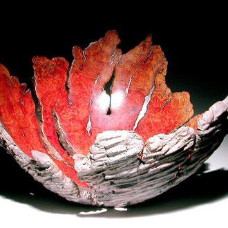 """ Carapace"" ronce de manzanita - h 15 cm - 2007"