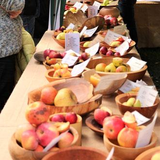 das Buffet ist eröffnet: genießen alter Obstsorten mit allen Sinnen