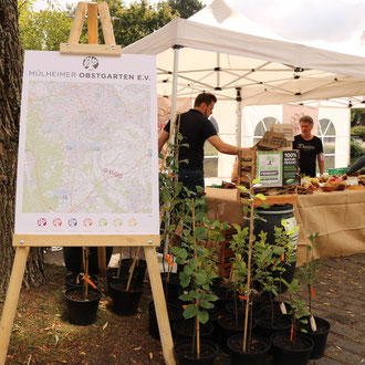 Novum für Mülheim: die Kartierung über den Bestand alter Obstsorten auf Mülheimer Gebiet