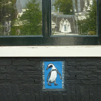 Pinguin in Amsterdam
