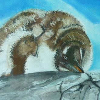 Pinguin Pause, 2014, 36x48 cm, 2011, Pastellkreide