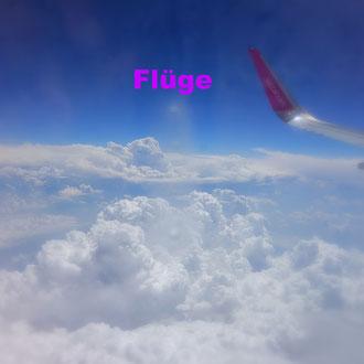 Flüge