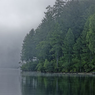 Am Ufer des Altausseer Sees