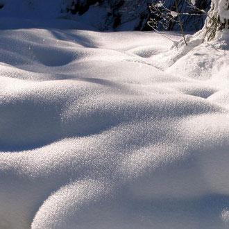 Winterimpressionen im Oberland