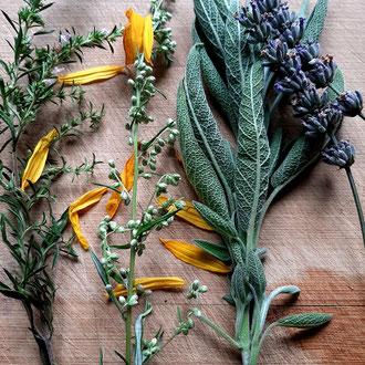 Bestandteile des Räucherbündels wie Lavendel, Beifuß, Salbei, Bergbohnenkraut