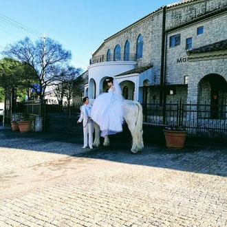 大きな馬だからこそドレスも映えますね。撮影もゆったりと落ち着いてできます。