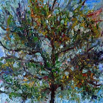 arbre 1, 40x40cm, huile, 2009