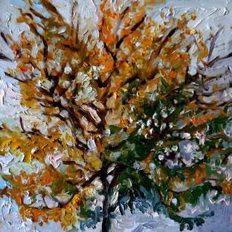 arbre 2, 40x40cm, huile, 2009