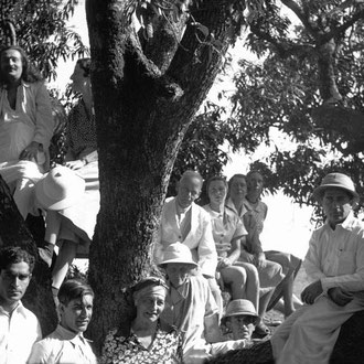 MSI Collection - India ; Jean is seated on the centre branch behind Will and Delia