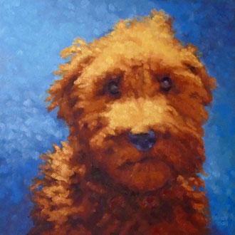 Caramel, 18 x 18- Pet Portrait Commissions also available!