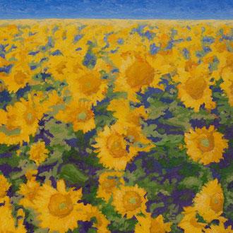 Sunshine Effects, 30x30